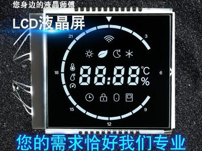连云港段码LCD液晶屏