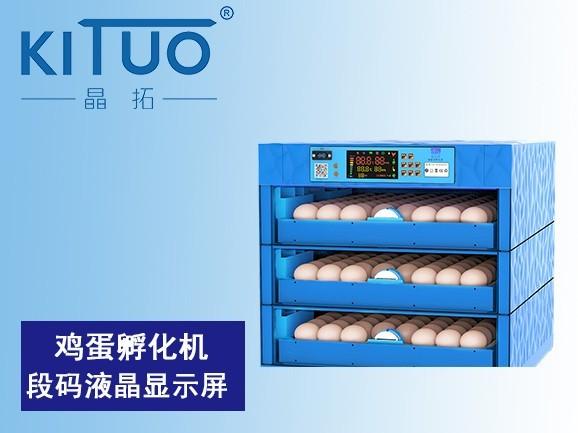 鸡蛋孵化机段码液晶显示屏